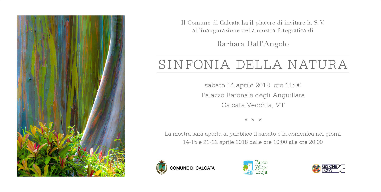 Sinfonia della natura - Barbara Dall'Angelo