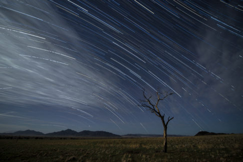 Star Trail - Barbara Dall'Angelo